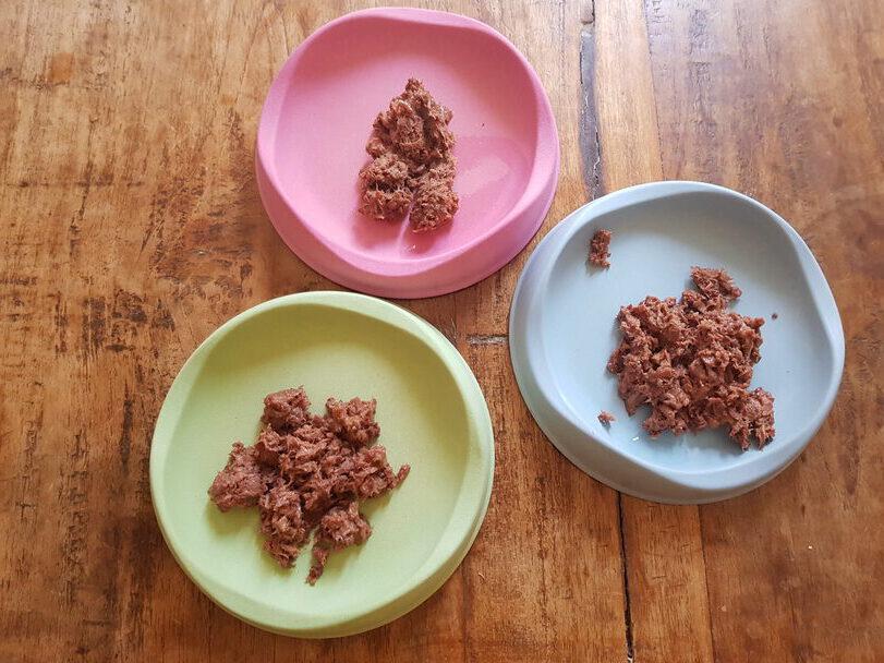 Katzenfutter aufgeteilt auf drei Näpfe